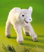 Sacrifice Lamb