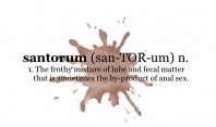 santorum (san-TOR-um) n. 1. The frothy mixture of lube and fecal matter that is sometimes the by-product of anal sex